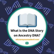 What is the DNA Story on Ancestry DNA?