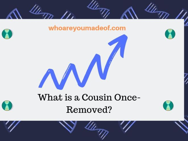 What is a cousin once removed