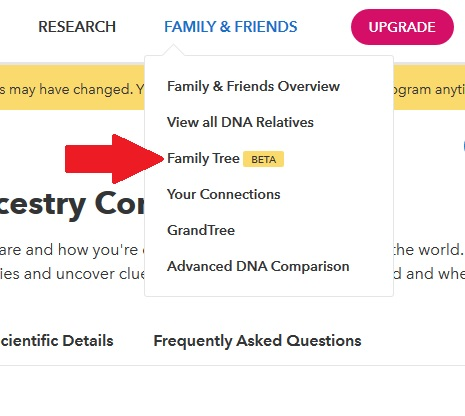 """how to access the 23andme family tree feature.  From a desktop computer, click on the family and friends tab, and then the """"family tree beta"""" option"""