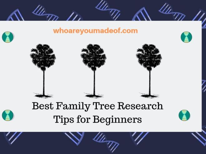 Best Family Tree Research Tips for Beginners