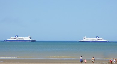 dfds1_IMG_4243