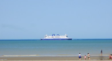 dfds4_IMG_4246
