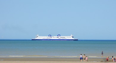 dfds5_IMG_4247