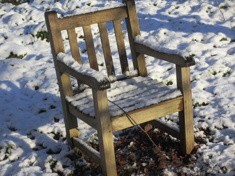 last chair of the year ... (click to enlarge ..)