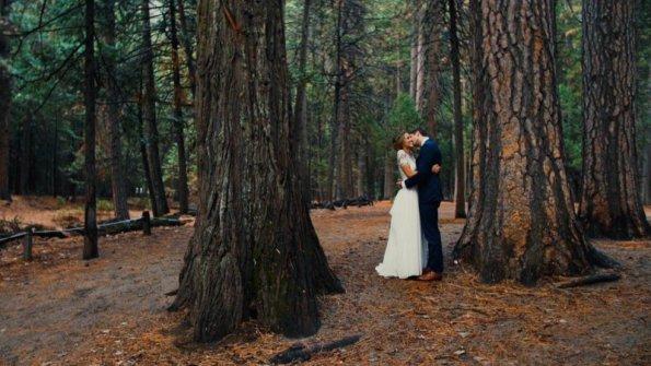 Forest Love.jpg