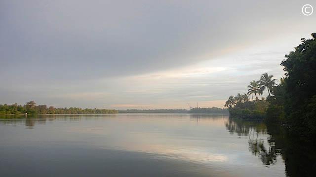 Serene River Shyambhavi