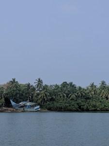 fishing boat buried amongst coconut trees
