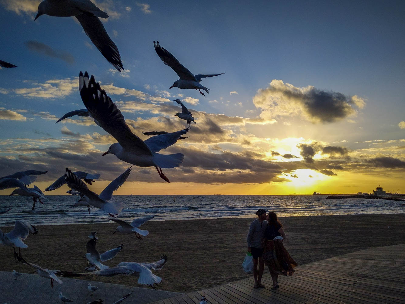 Sweet Moment at St.Kilda Beach