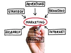 2013 Marketing Plan