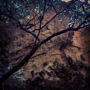InstagramCapture_b8fd41d9-a208-4e41-9d55-69cb064ca260