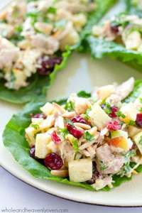 Extra-creamy and loaded with crunchy apples and cranberries, this colorful chicken salad makes the perfect filler for these beautiful and healthy lettuce wraps!