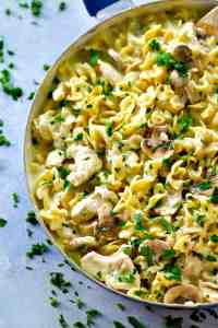 This lighter twist on chicken stroganoff is going to quickly become a permanent dinner go-to! It's creamy, rich, lighter on the calories, and made entirely in one pot.