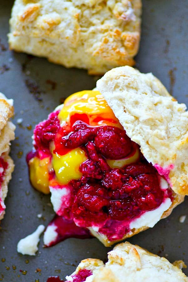 Flaky homemade lemon butter biscuits are filled to capacity with tangy raspberries, creamy lemon curd, and lots of fluffy whipped cream for the ultimate summer lemon raspberry shortcakes!