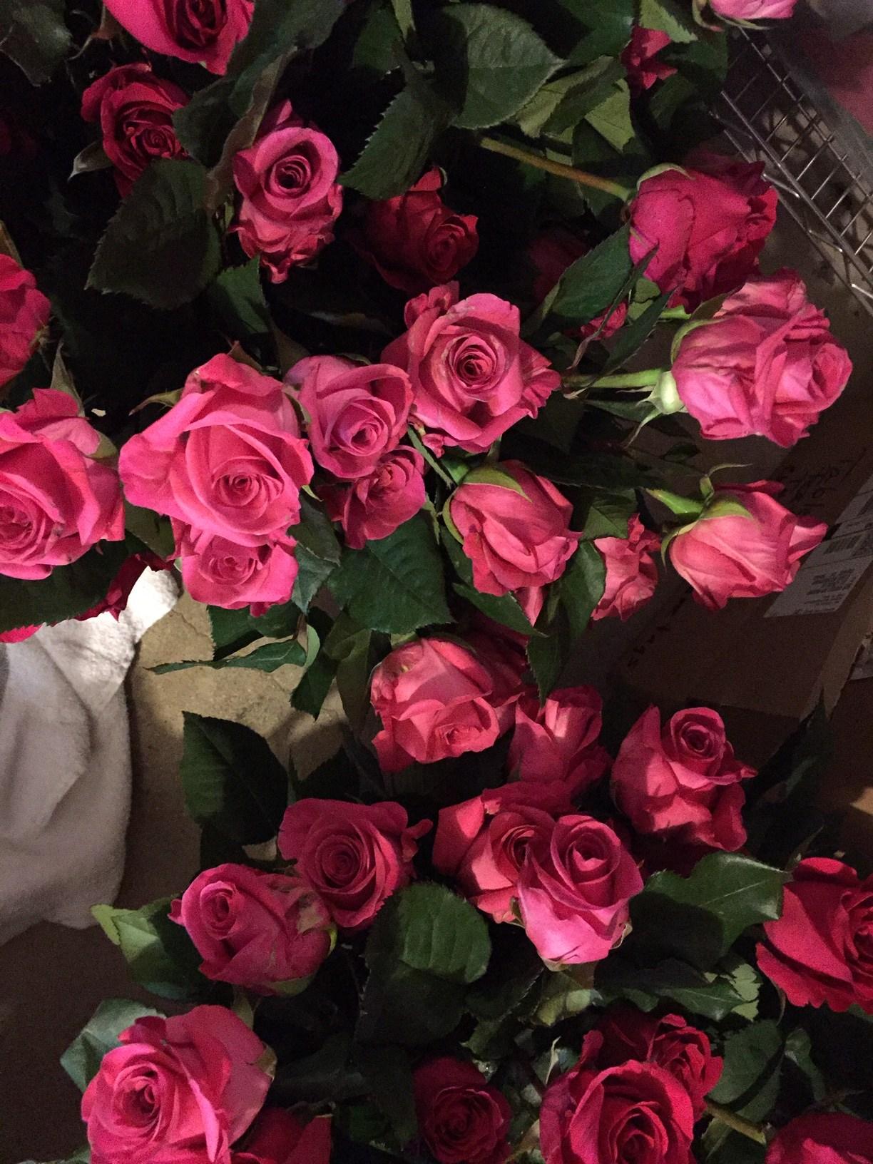 Wholesale Flowers: Wholesale Wedding Flowers