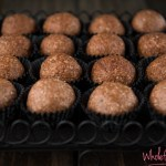 NF No Blend Bliss Balls  (1 of 1)