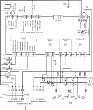 3 Pole Transfer Switch Wiring Diagram Collection