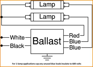 T8 Electronic Ballast Wiring Diagram Gallery