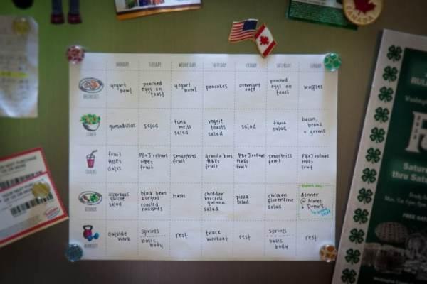 meal plan planning programma alimentare tabella pasti organizzazione studenti universitari fuori sede