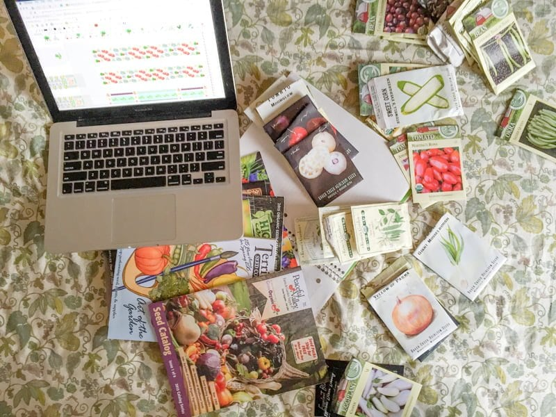 Laptop Seed Catalogs