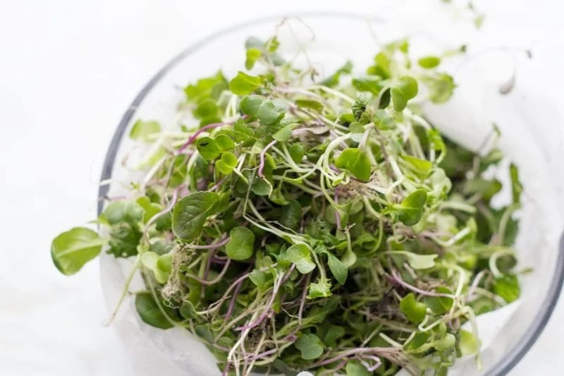 Microgreens sit in a glass bowl.