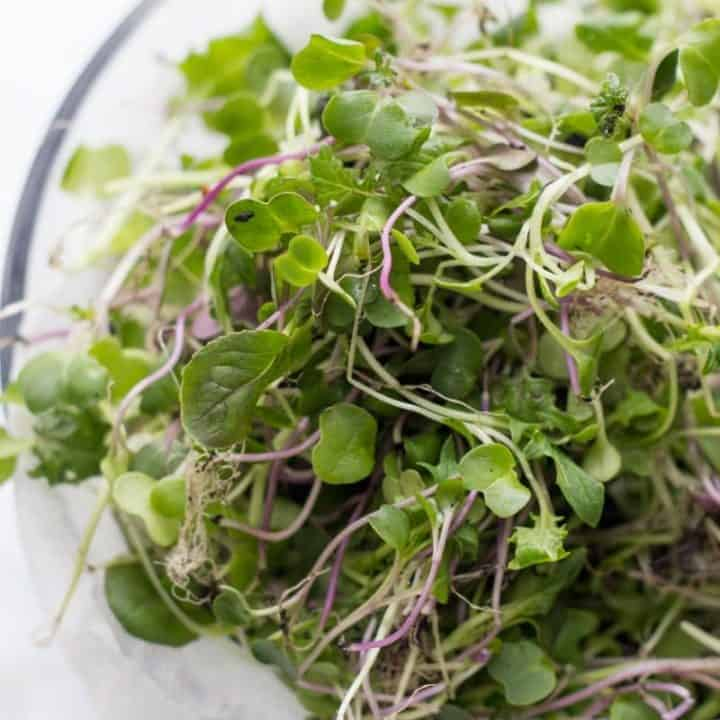 Microgreens sit in a glass bowl, ready to be washed.