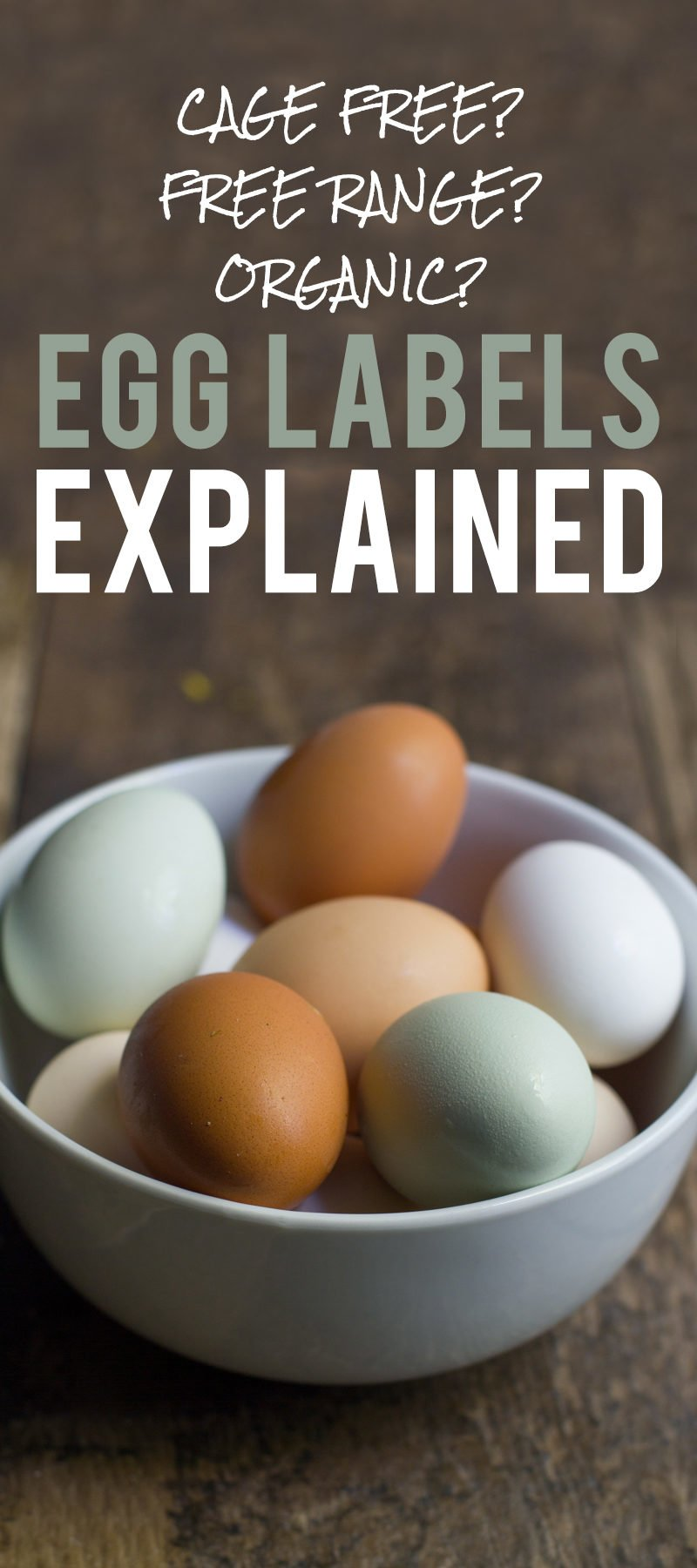 Egg Labels Explained