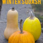 "A pumpkin, butternut squash, and spaghetti squash arranged on concrete, with the text ""How to Cure and Store Winter Squash"""