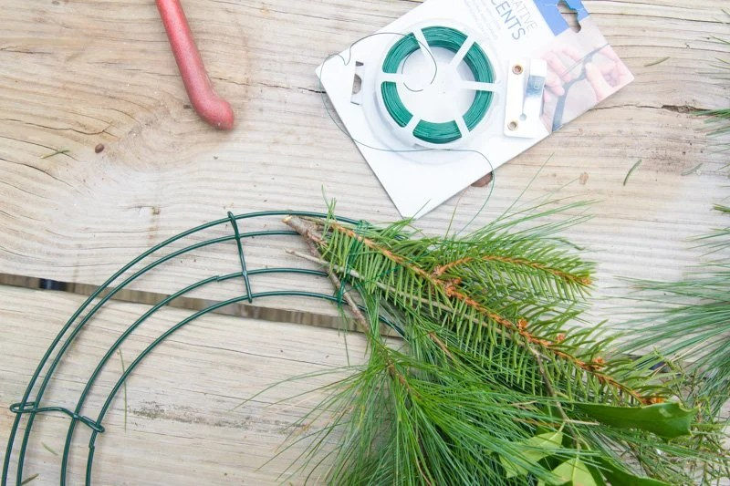 Bundle of evergreen sprigs on top of a wreath form
