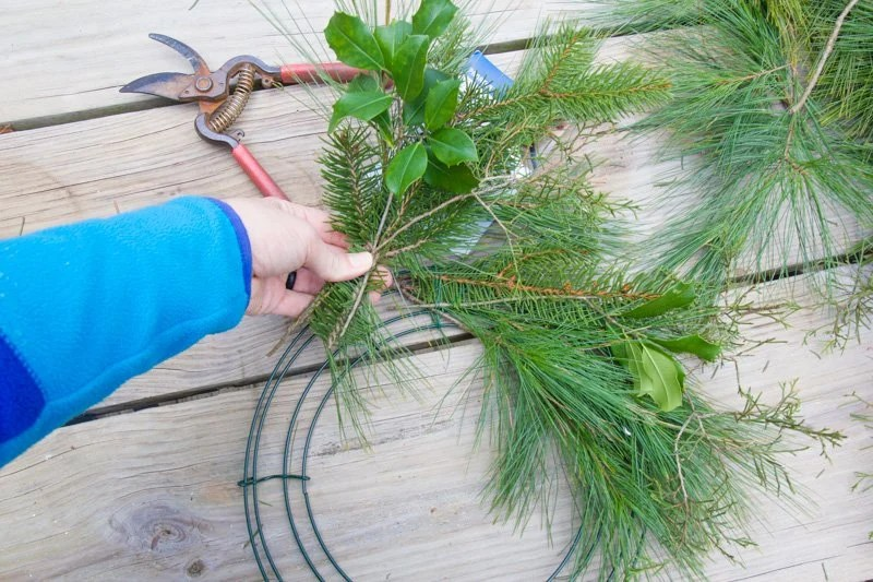 Hand holding more fresh greenery to add to a wreath form