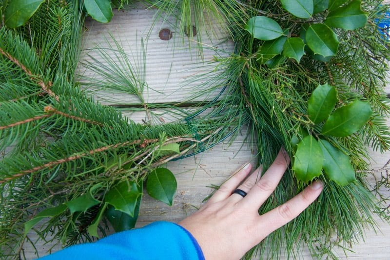 Hand holding the last bundle of fresh greenery up to a wreath form