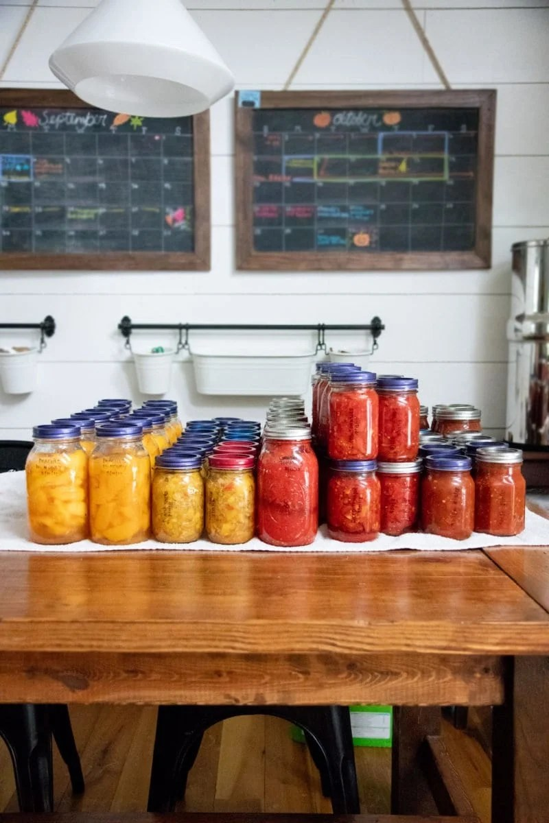 Glass jars of tomatoes and peaches lined up on a table