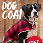 "Black and white dog sitting and wearing a plaid custom dog coat outside. Text overlays read ""How to Sew a Custom Dog Coat"" and ""Free Pattern."""