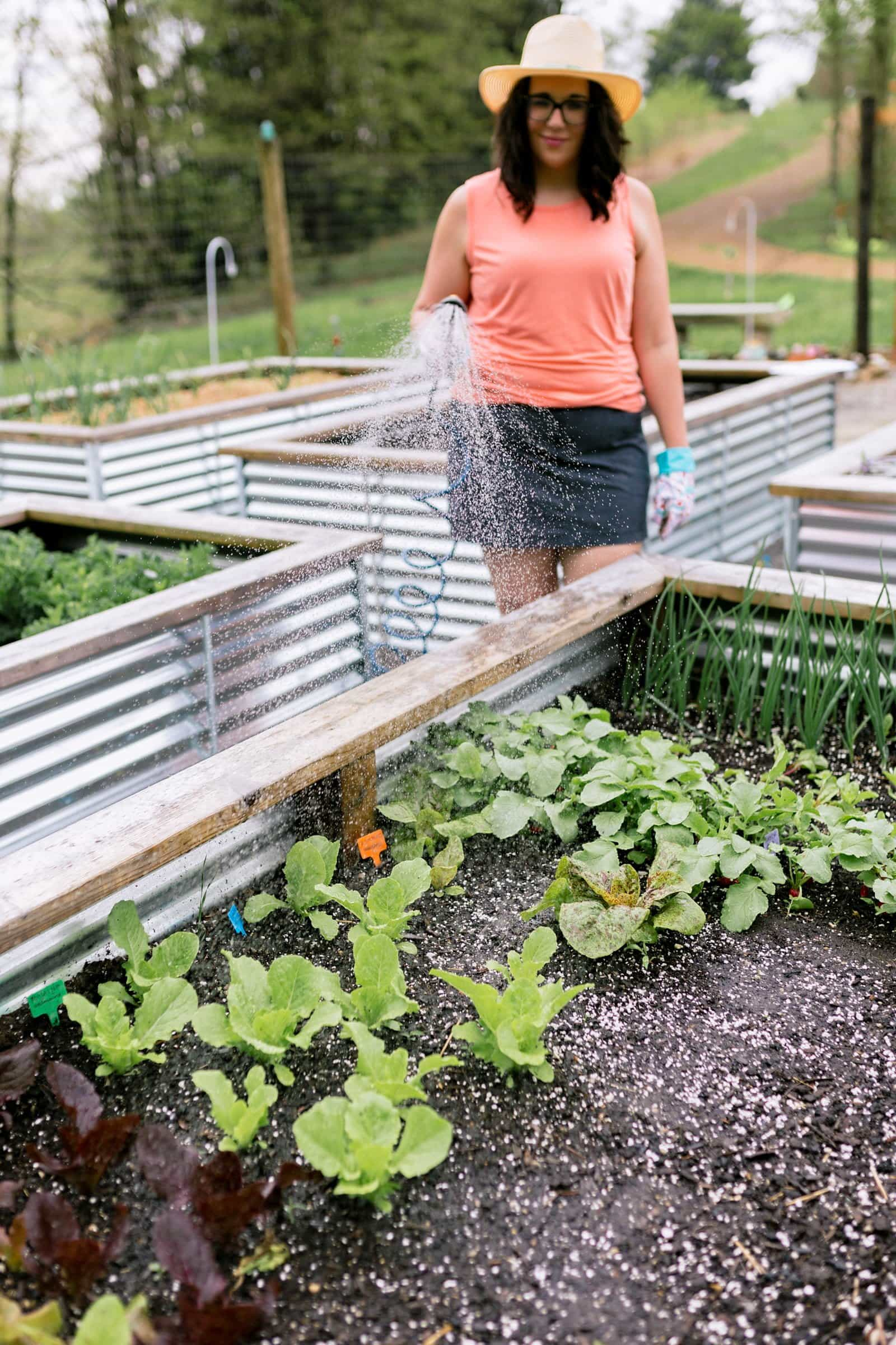 Woman in a coral shirt watering a raised garden bed