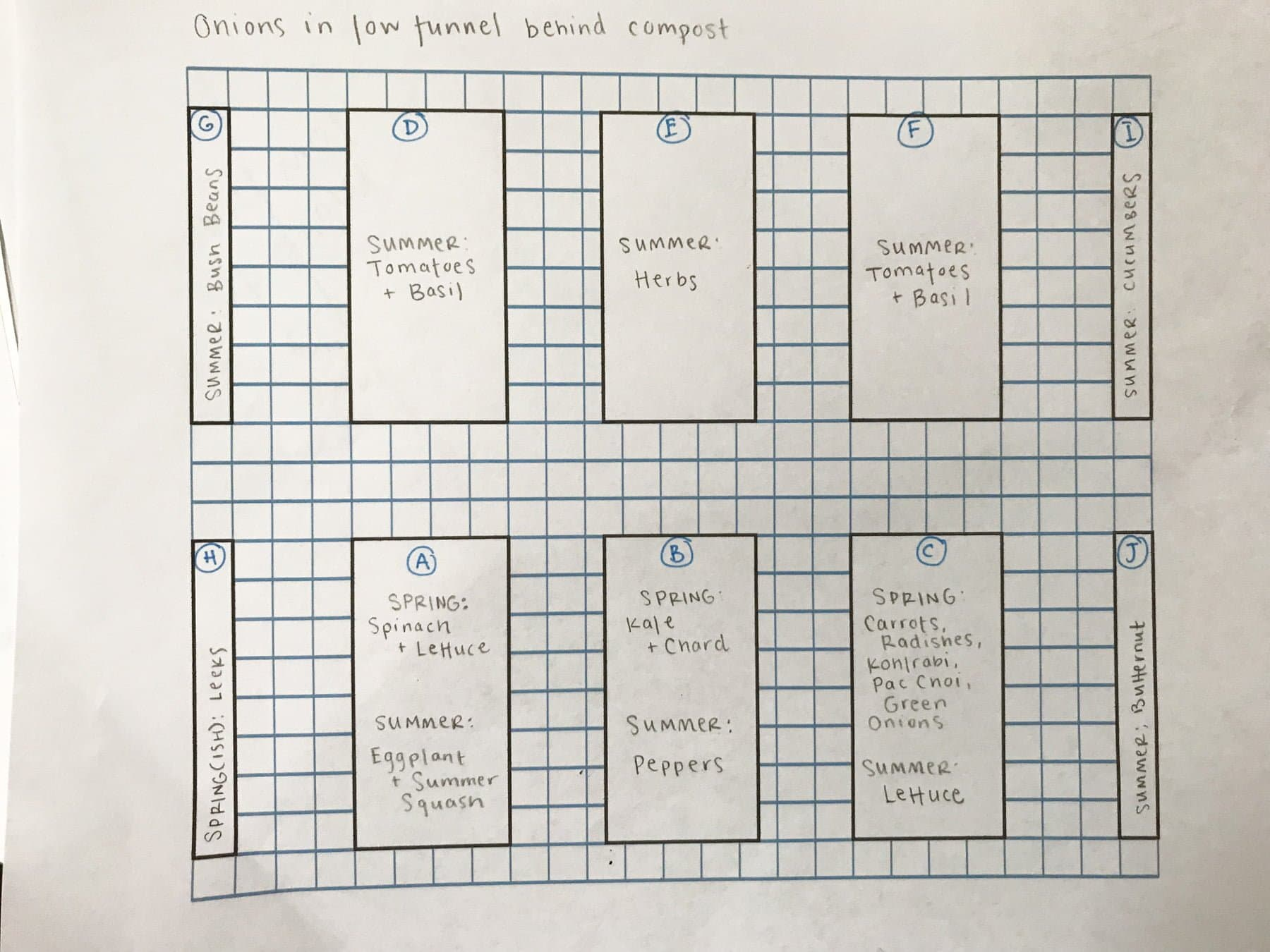 Grid showing the planned layout for a vegetable garden