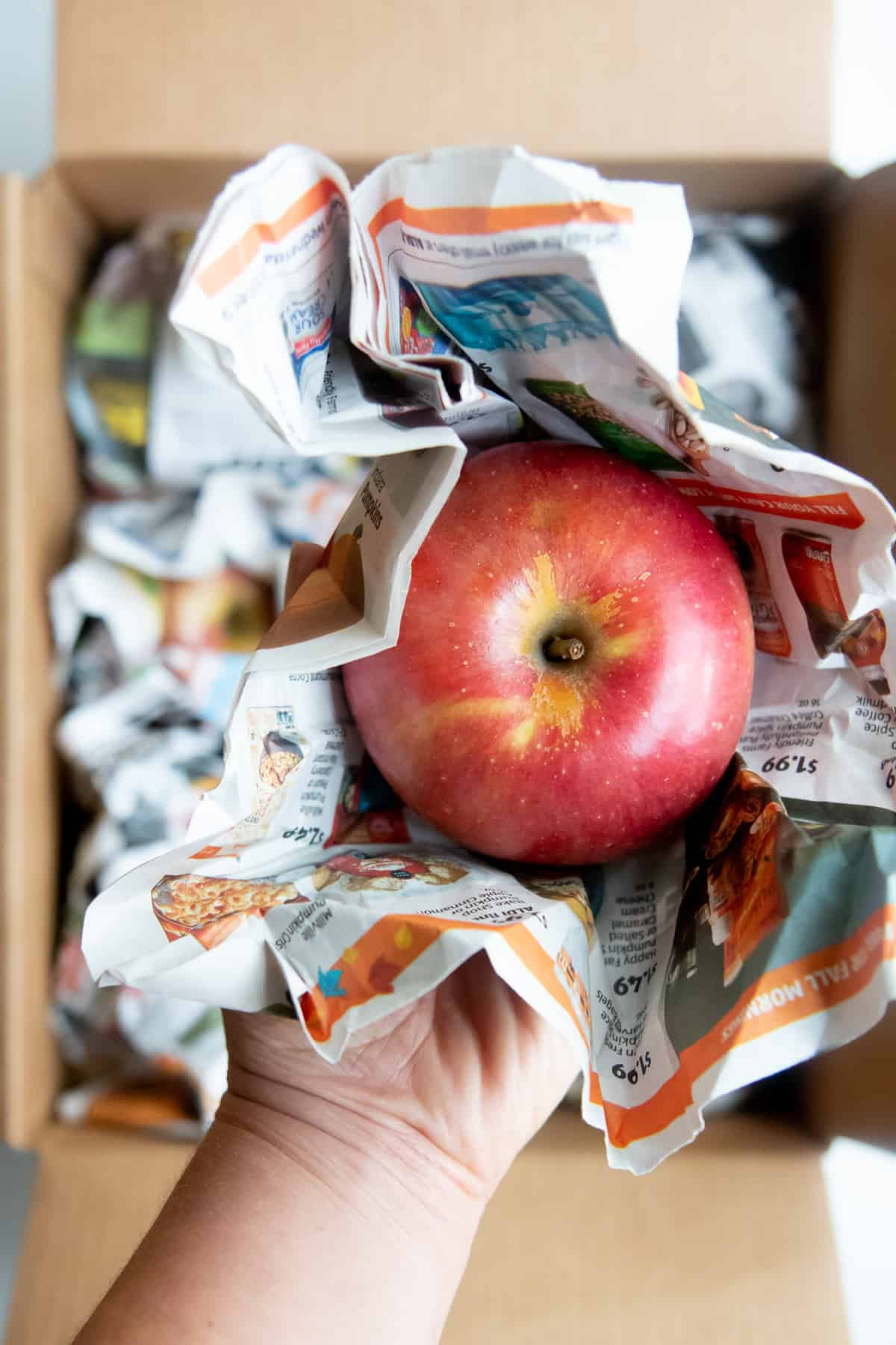 Red apple nestled in newspaper. A hand holds the apple over a cardboard box.