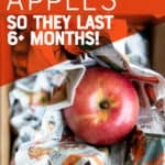 "Red apple nestled in newspaper. A hand holds the apple over a cardboard box. A text overlay reads ""How to Store Apples So They Last 6+ Months!"""