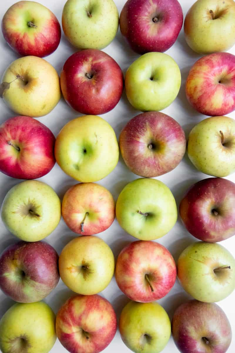 bushels of apples. trees Farm To Market fabric covered with barns