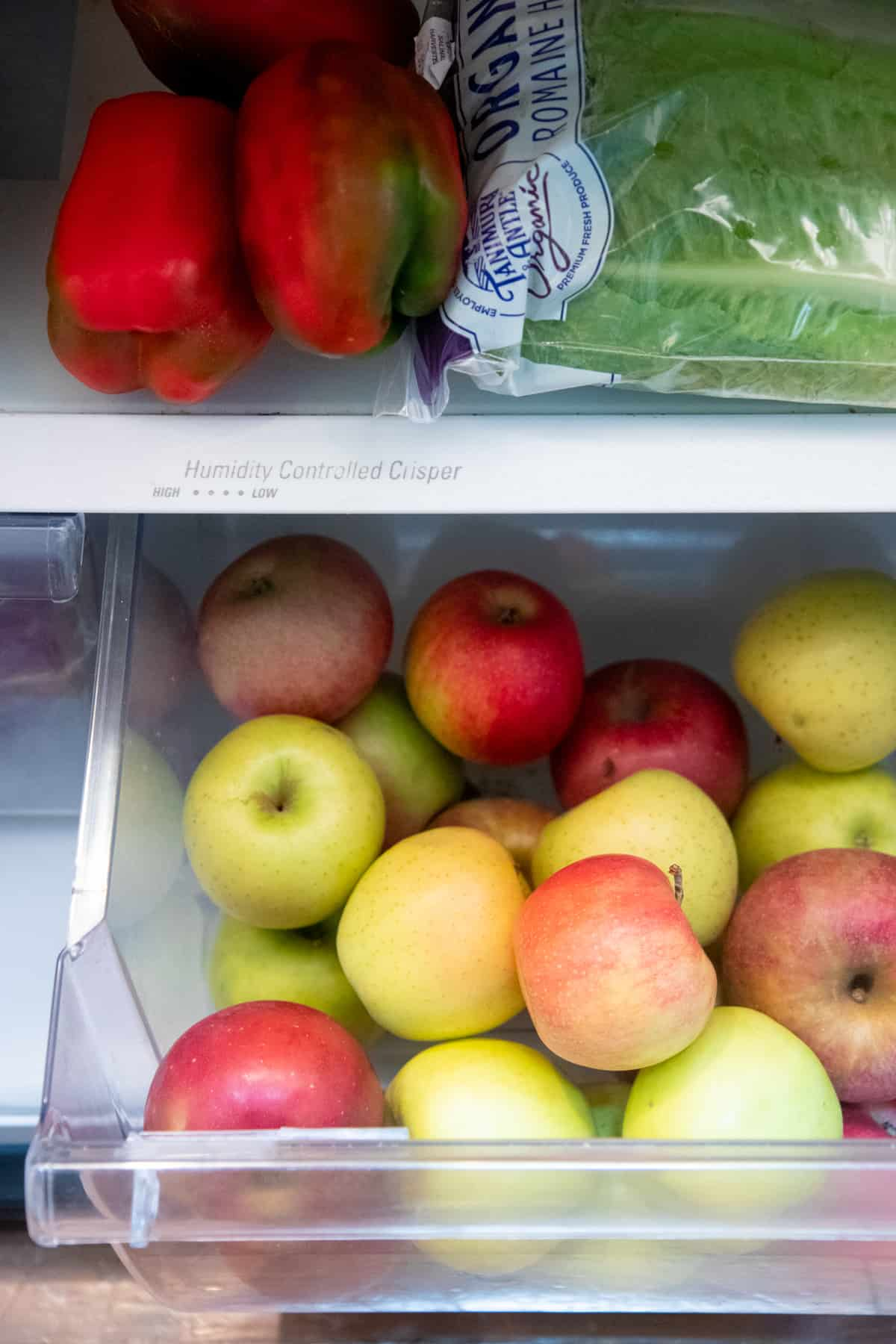Green, yellow, and red apples are piled in a crisper of a refrigerator.
