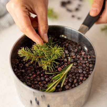 A hand drops pine needles into a small saucepan full of water, rosemary, and juniper berries to make stovetop potpourri.