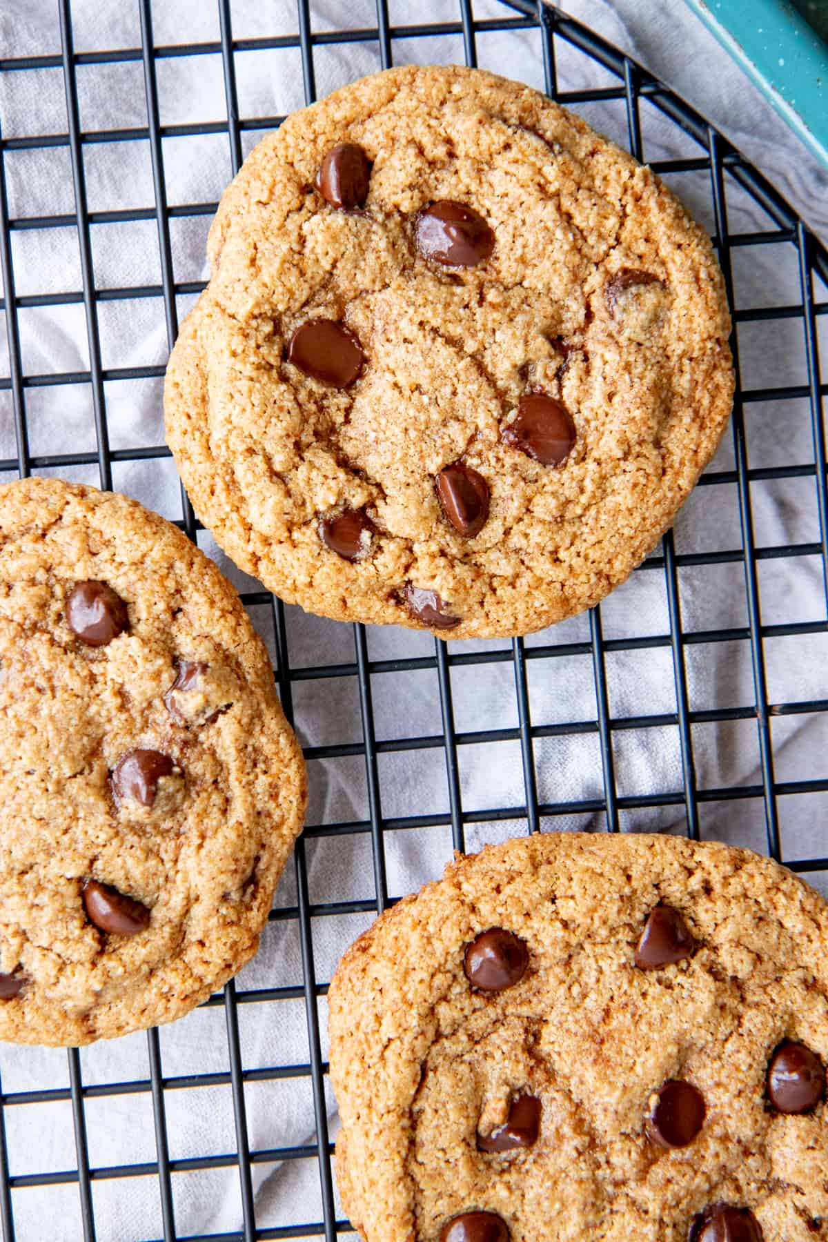 Chocolate chip cookies sit on a wire baking rack.