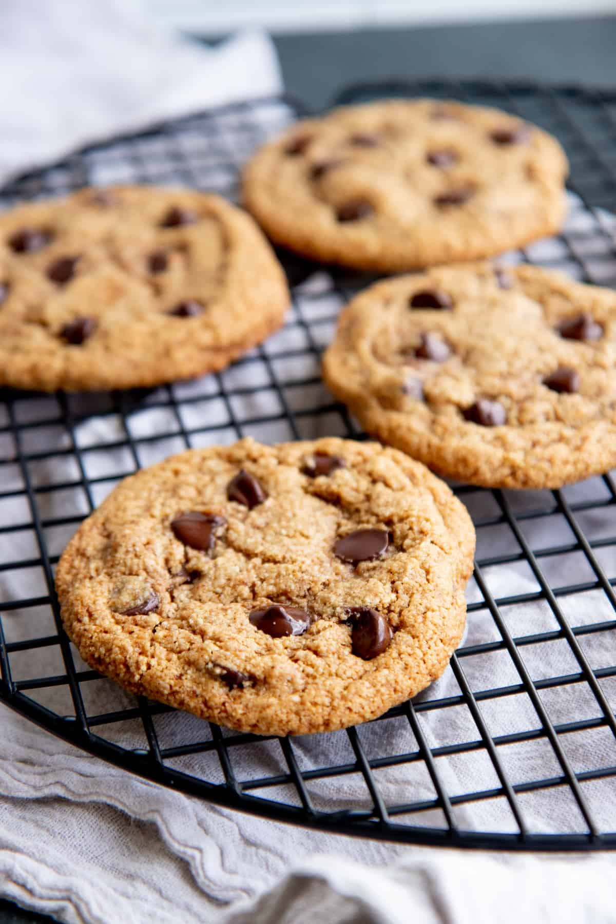 Almond flour chocolate chip cookies cool on a wire baking rack.