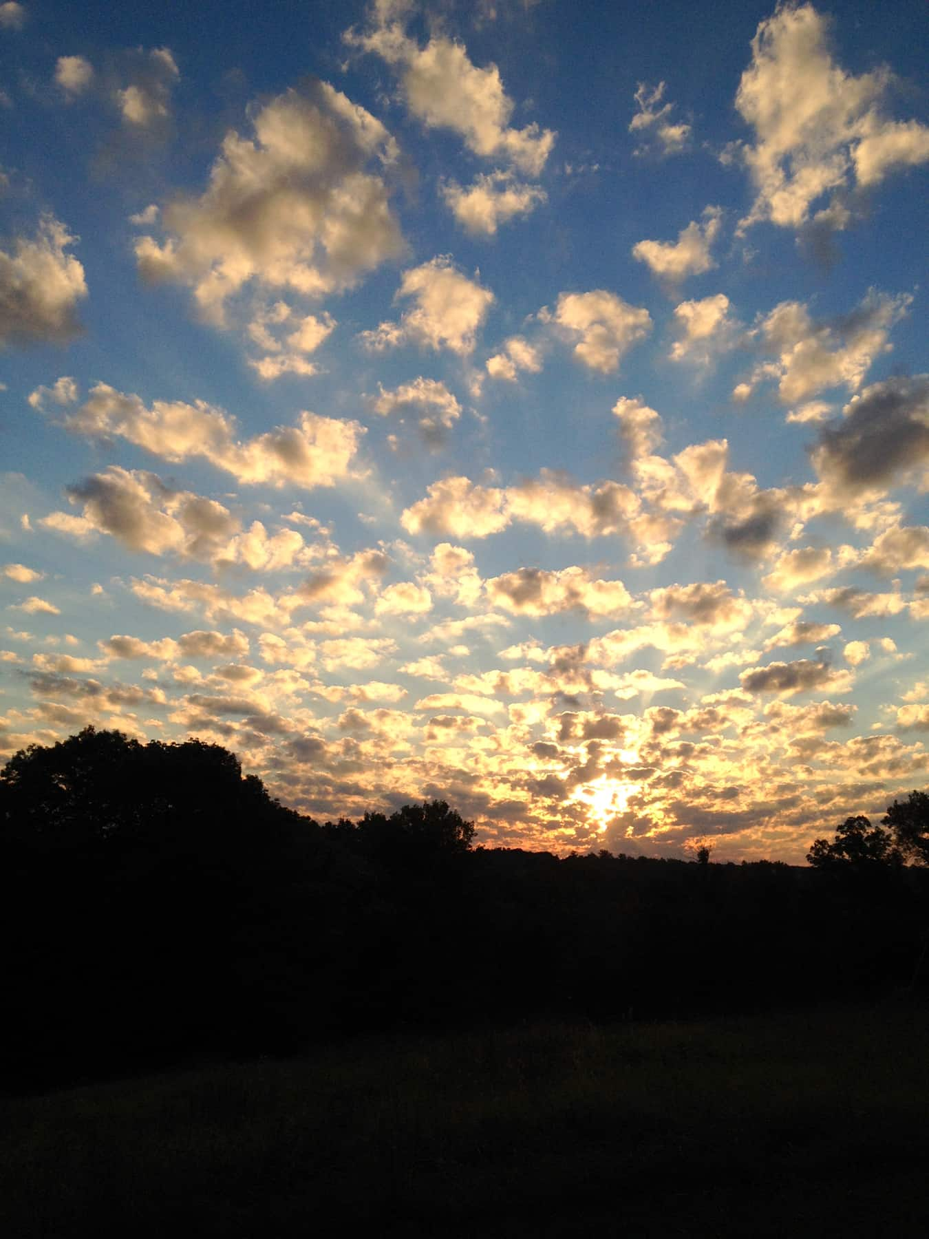 Sunrise over a sky dotted with clouds.