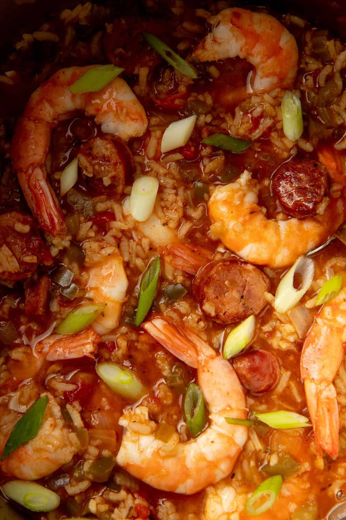 Shrimp and sausage jambalaya topped with scallions