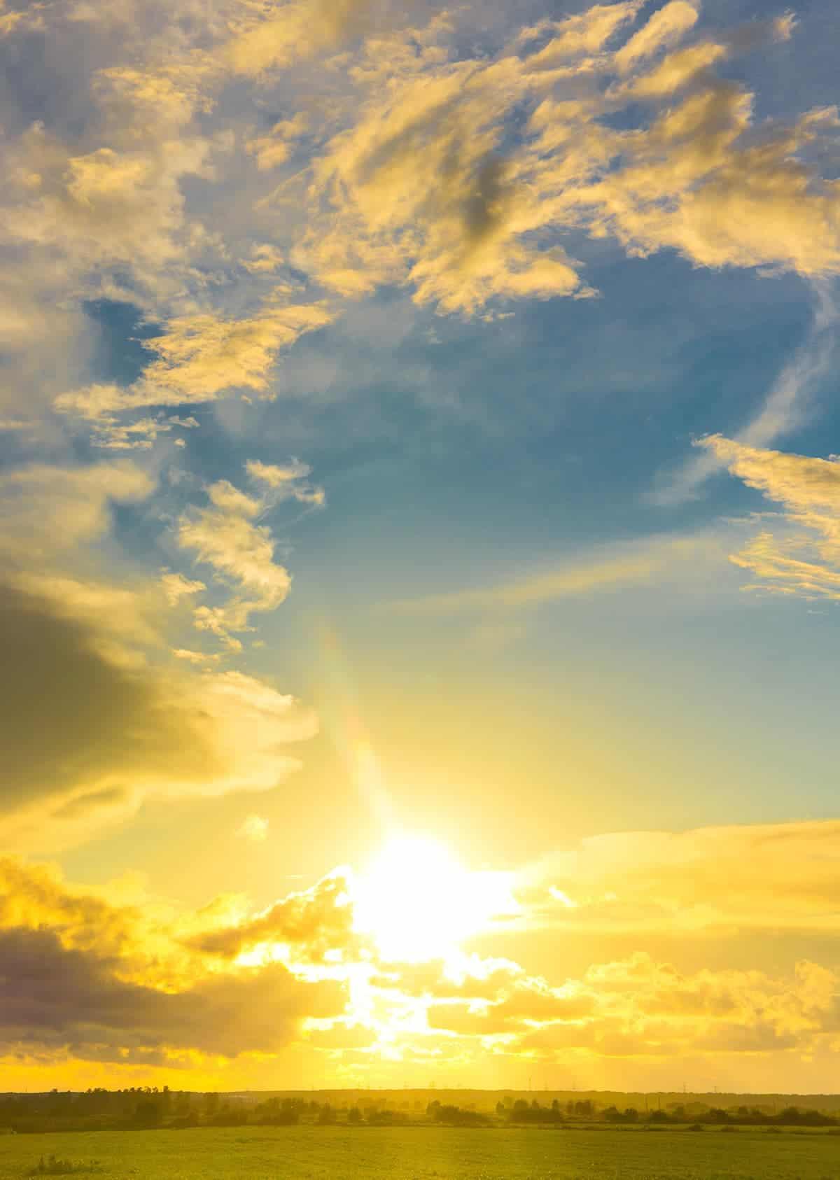 A sun rises over a field.