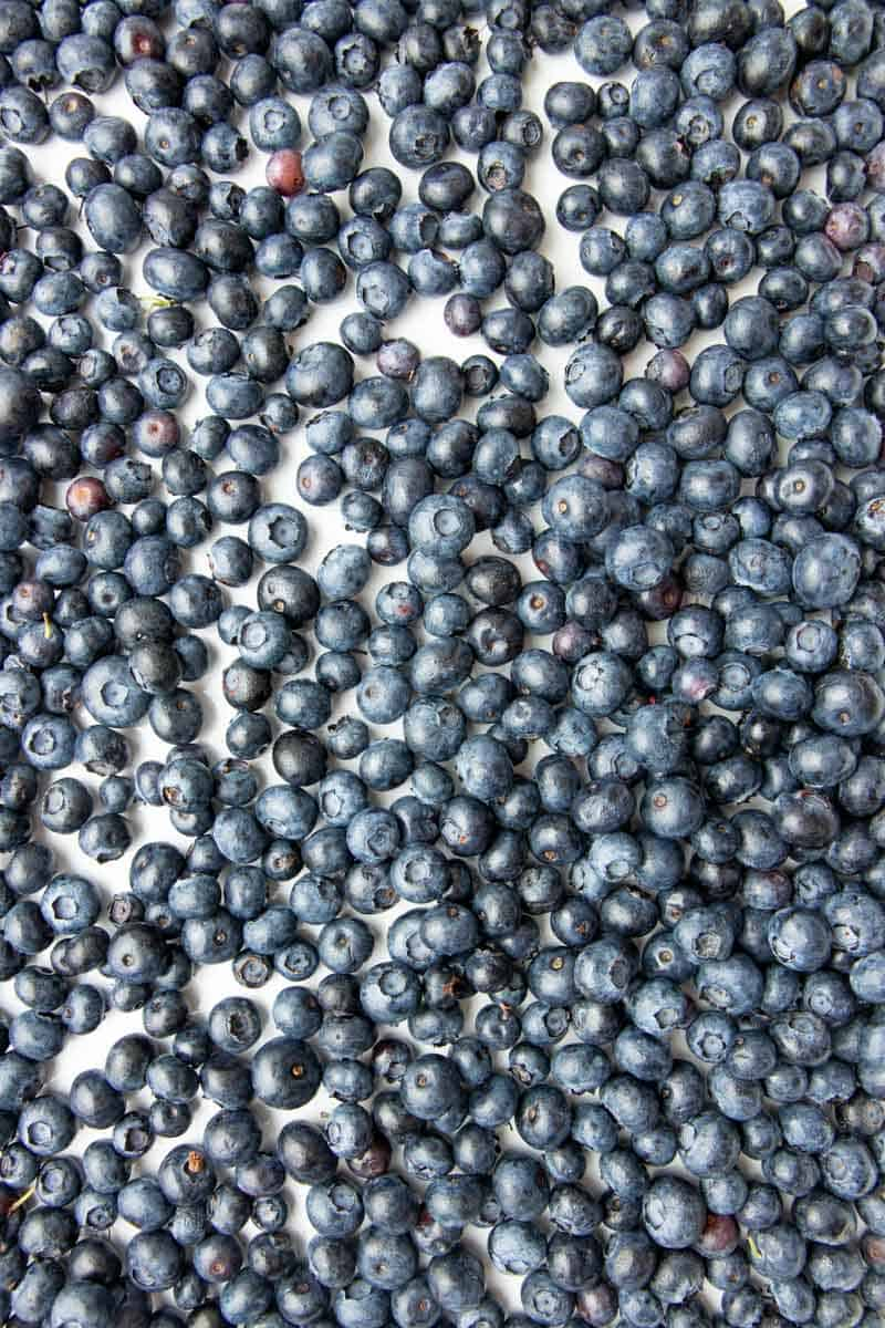 Overhead of fresh blueberries in a single layer on a baking sheet.