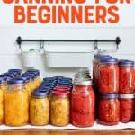 "Quart and pint-sized jars of canned fruits and vegetables such as peaches and crushed tomatoes lined up by type. A text overlay reads, ""Step-by-Step Canning for Beginners, All Your Canning Questions Answered!"""