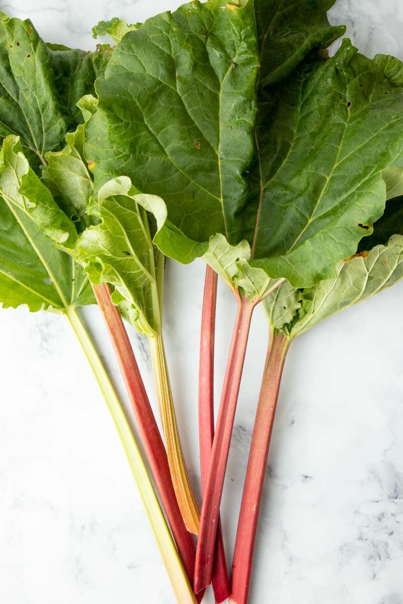 Overhead of fresh stalks of rhubarb with the leaves still attached, fanned out on a marble countertop.