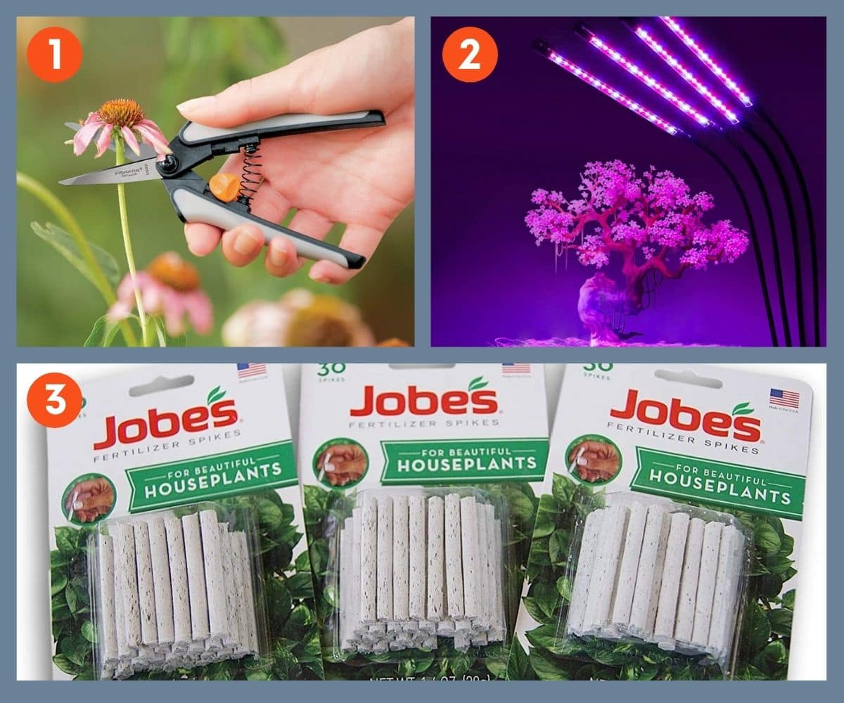Collage of three tools for houseplant care such as fertilizer spikes, small pruning shears, and specialty lights.