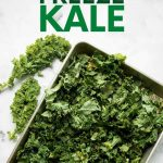"""Overhead of torn kale in a single layer on a baking sheet to flash freeze before storing. A text overlay reads, """"How to Freeze Kale."""""""
