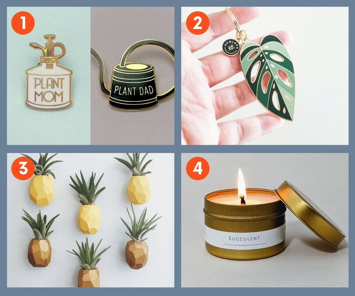 Collage of four unique plant accessories including succulent scented candle, plant pins, and a keyring.